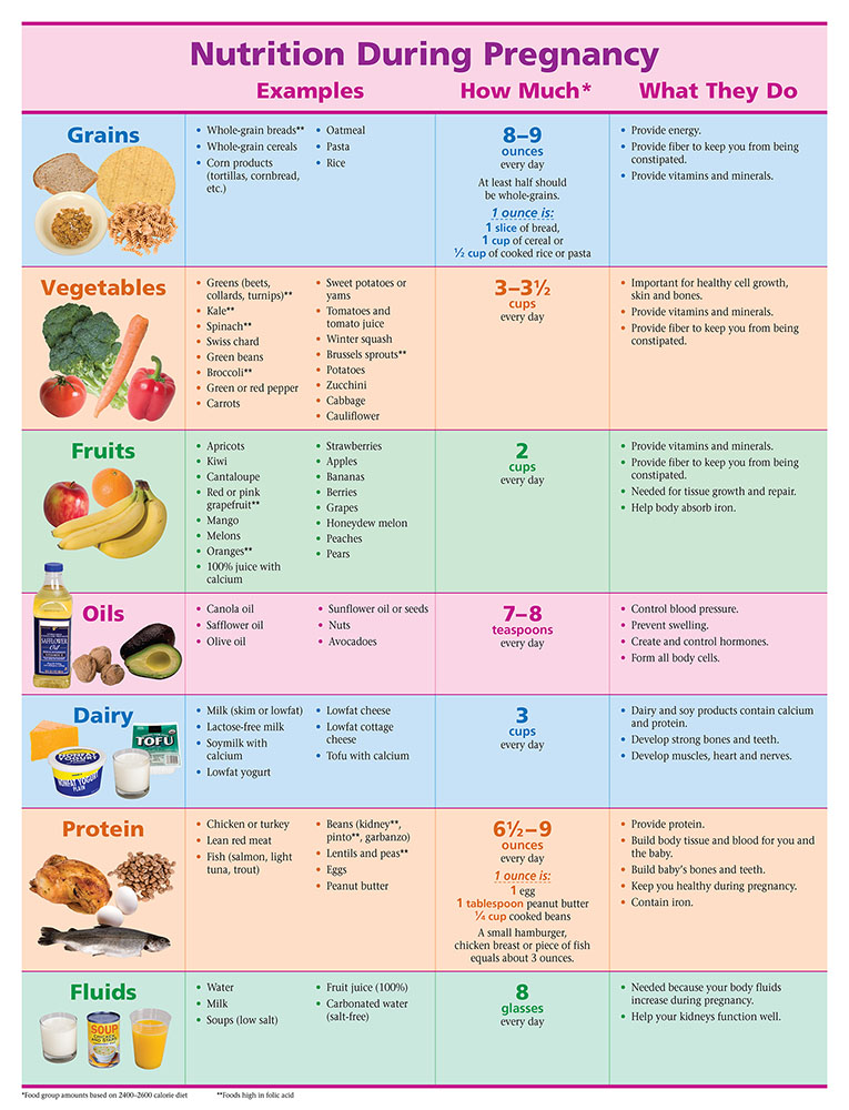 Nutrition During Pregnancy Pamphlet Etr