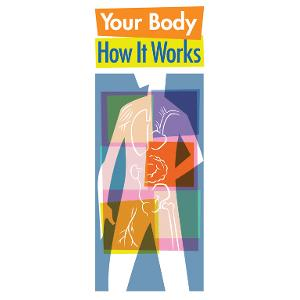 Your Body: How It Works