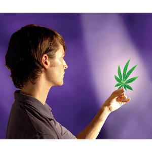 Myths of Marijuana Debunked (DVD) (Gr. 6-12)