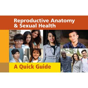 Reproductive Anatomy & Sexual Health: A Quick Guide