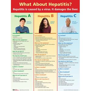 What About Hepatitis? Poster (Laminated)