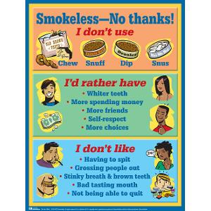 Smokeless -- No Thanks! Wall-Size Poster (Laminated)