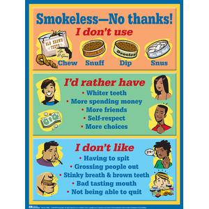 Smokeless -- No Thanks! Bulletin-Board-Size (Laminated)