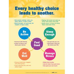 Healthy Choices Poster (Laminated)
