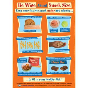 Be Wise About Snack Size Magnet