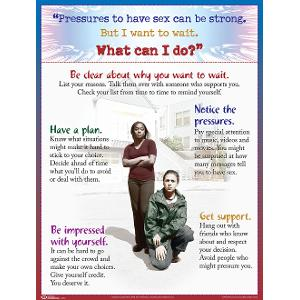 Abstinence Focus Poster (Laminated)