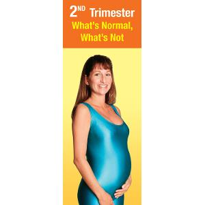 2nd Trimester: What's Normal, What's Not
