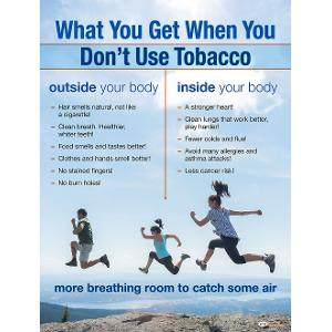 Tobacco Facts Poster (Laminated)