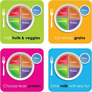 MyPlate Sticker Series