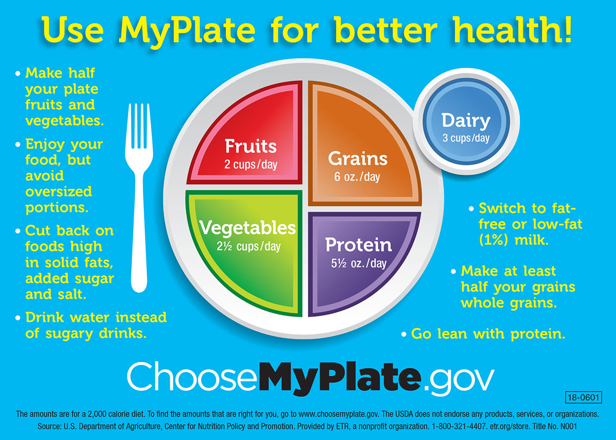 Nutrition Plate Diagram Schematic Wiring Diagrams