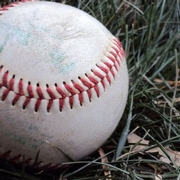 Extra Innings: Using a Video Game and Baseball to Teach Science and Math